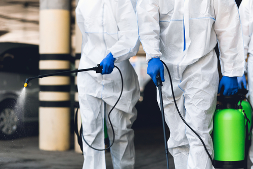 Why Hire Us As Your Protective Disinfectant Coating Company?